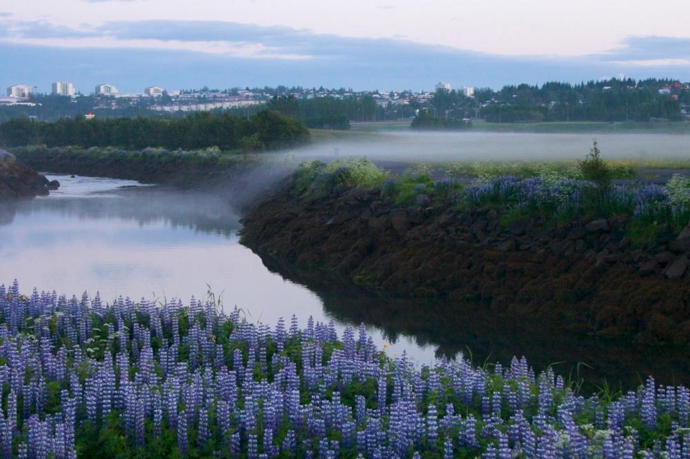 mist waterfall reykjavík Iceland